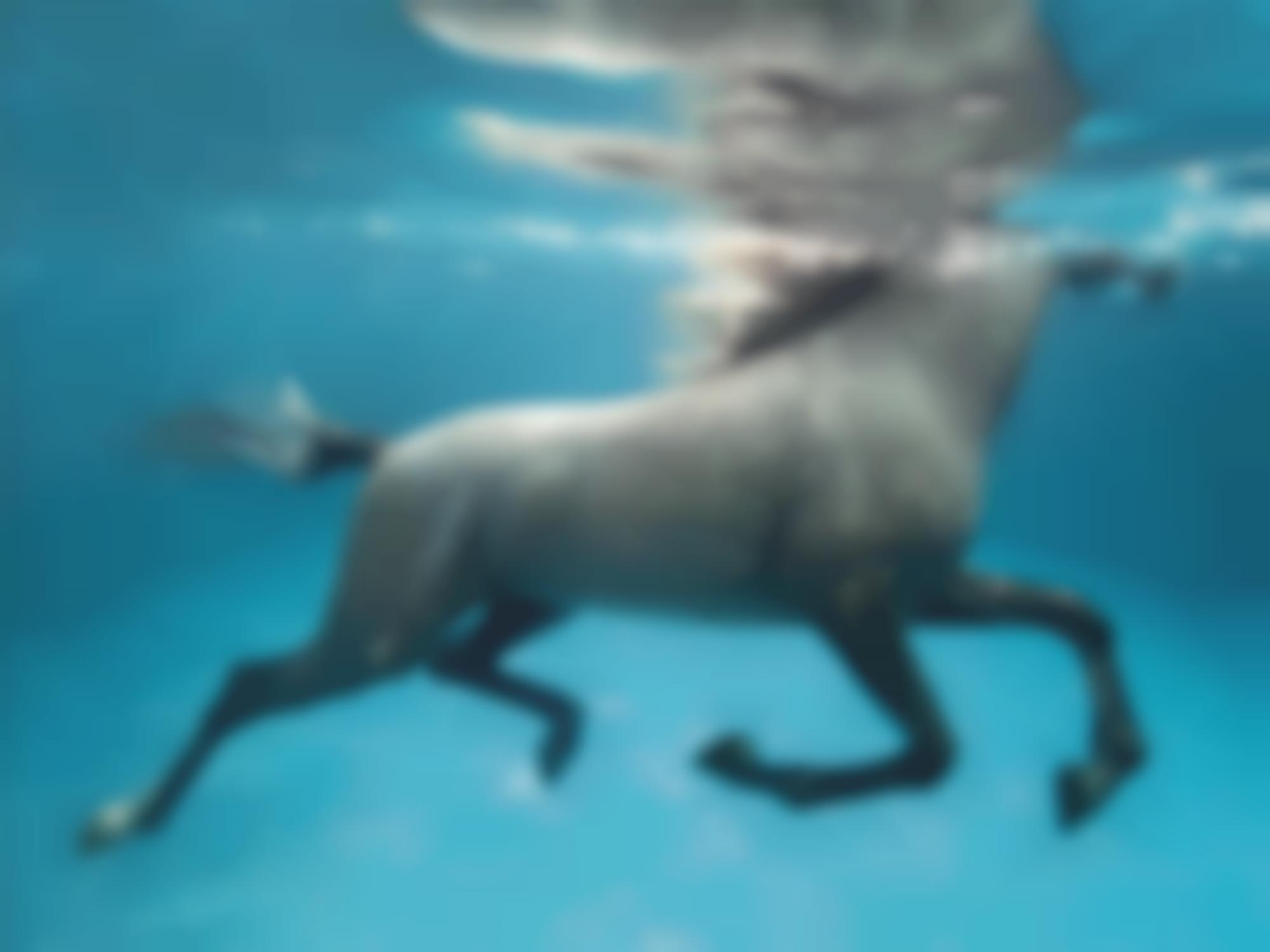 Vanessa von Zitzewitz-Underwater 1' Doha-2009