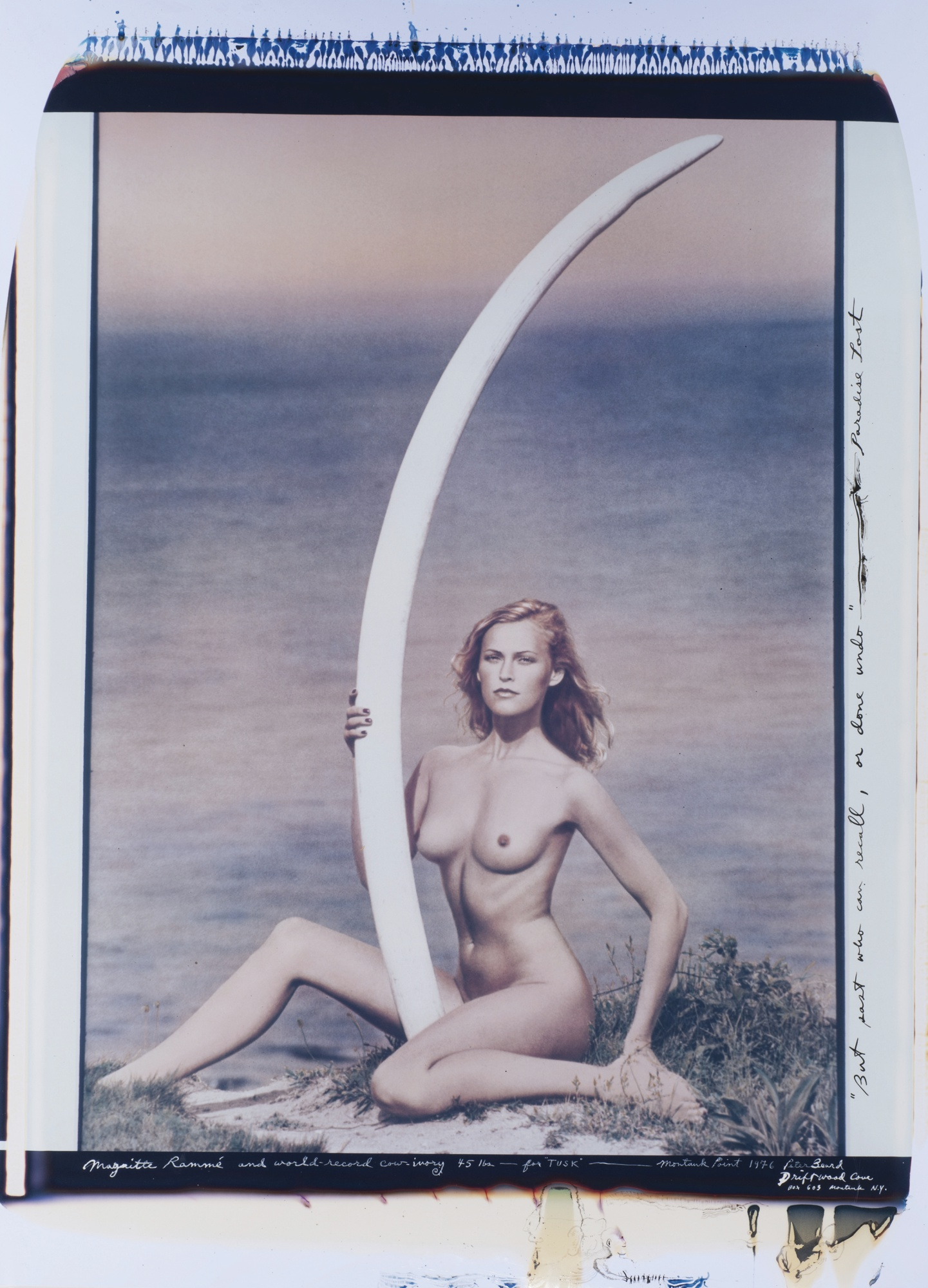 "Peter Beard-Magritte Romme And World Record Cow-Ivory (45 Lbs.) - For ""Tusk"" - Montauk Point-1976"