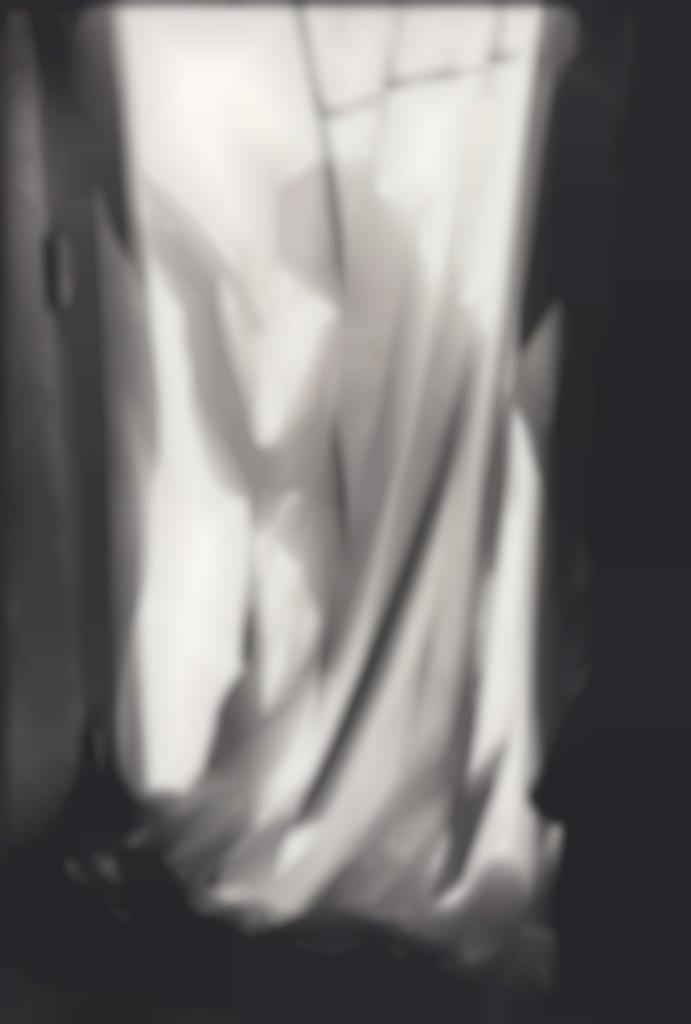 Henri Cartier-Bresson-Peintre en batiment, Paris-1980