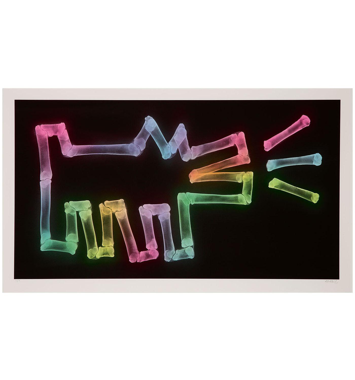 SHOK-1-Dog With Bones (Neon Pastels)-