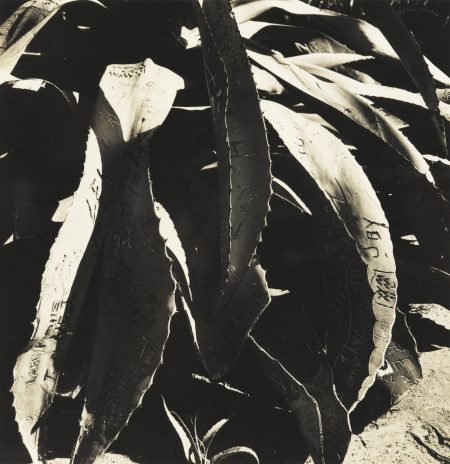 Walker Evans-California-1947