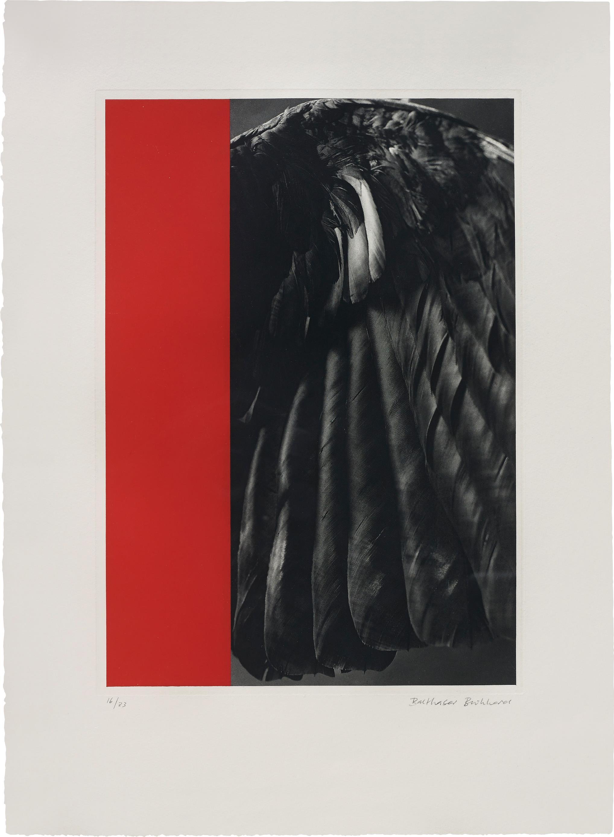 Balthasar Burkhard-Crow-Wing and Monochrome-1988