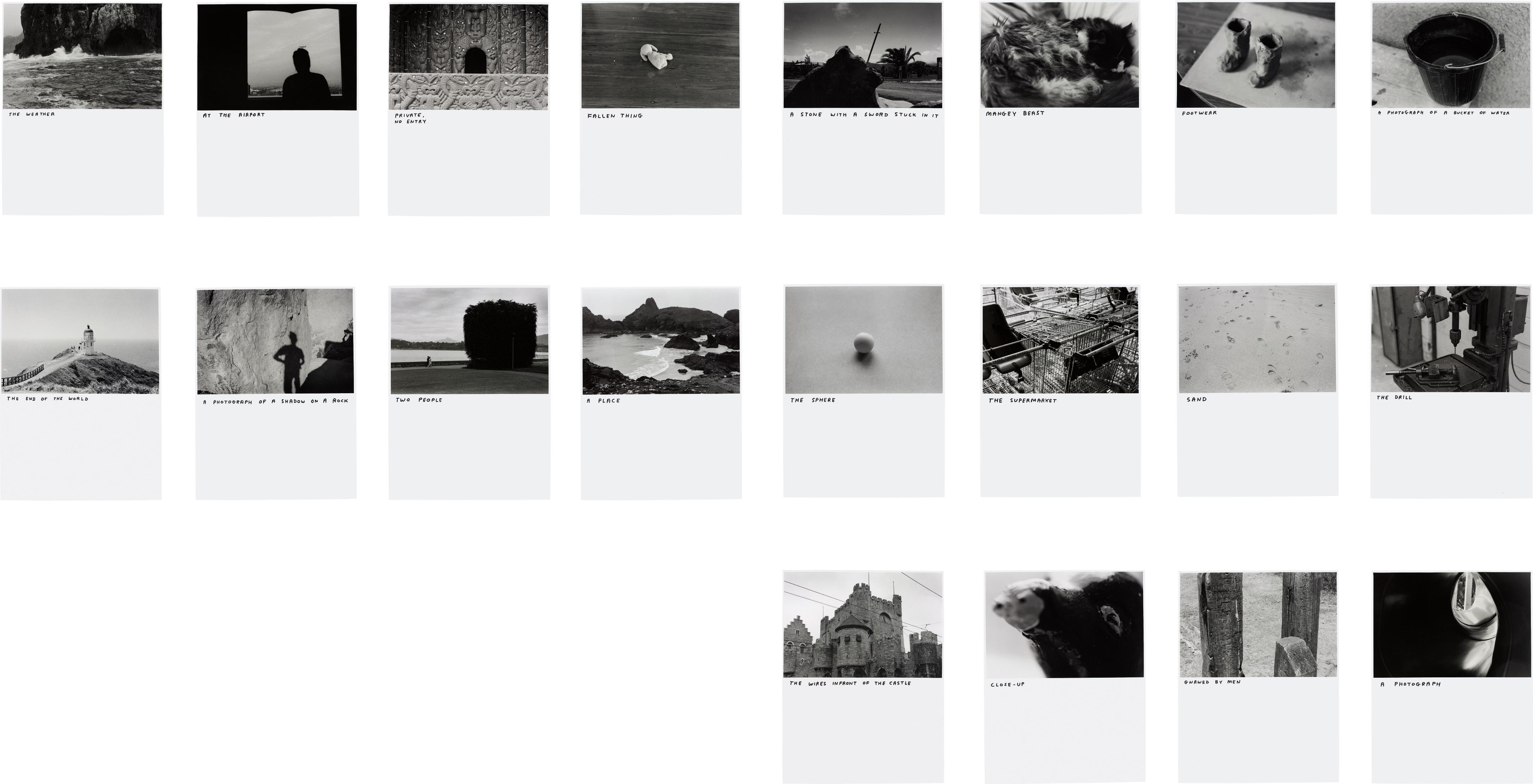 David Shrigley-Untitled (Group of 20 photographs)-2005