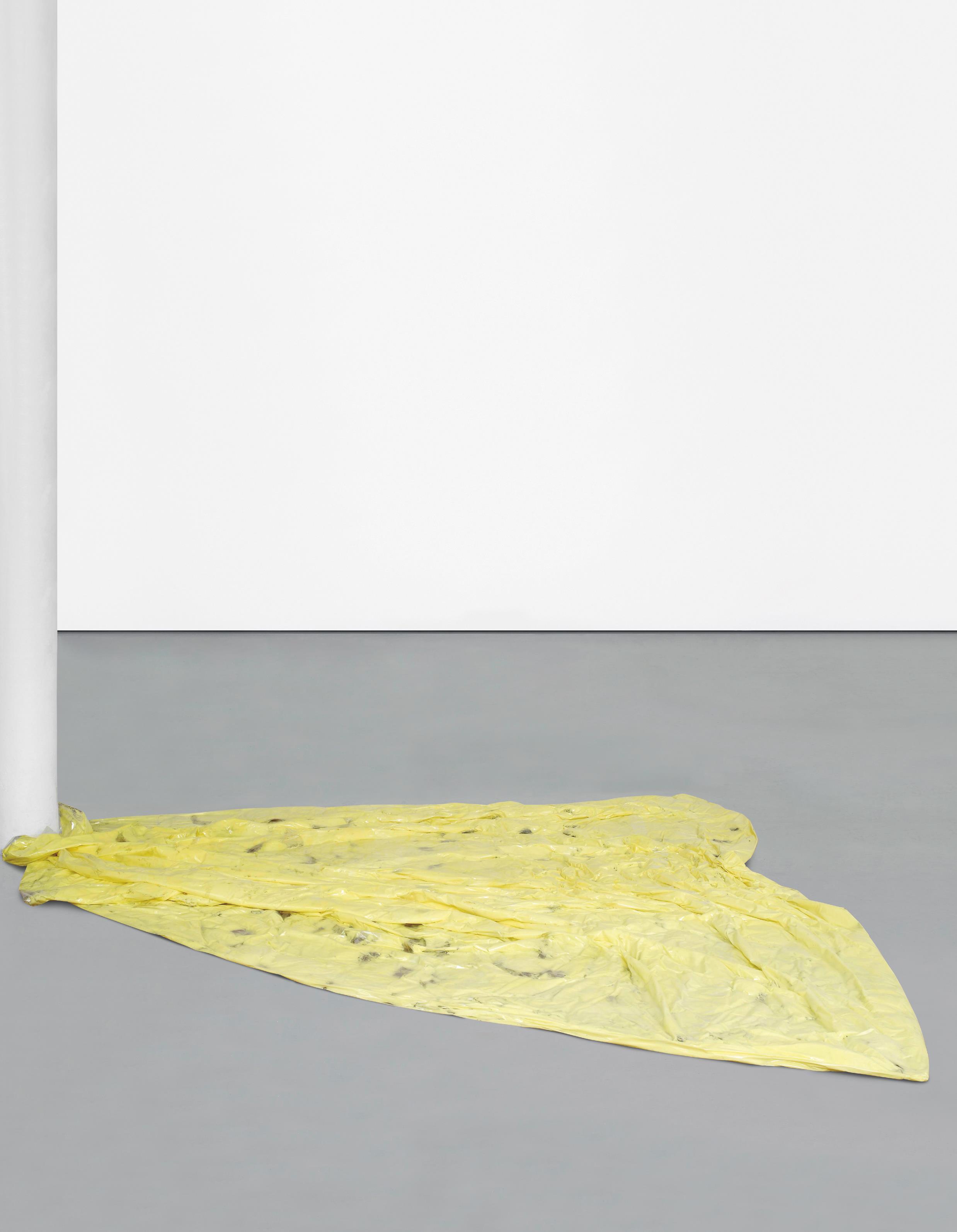 Karla Black-For Use-2009