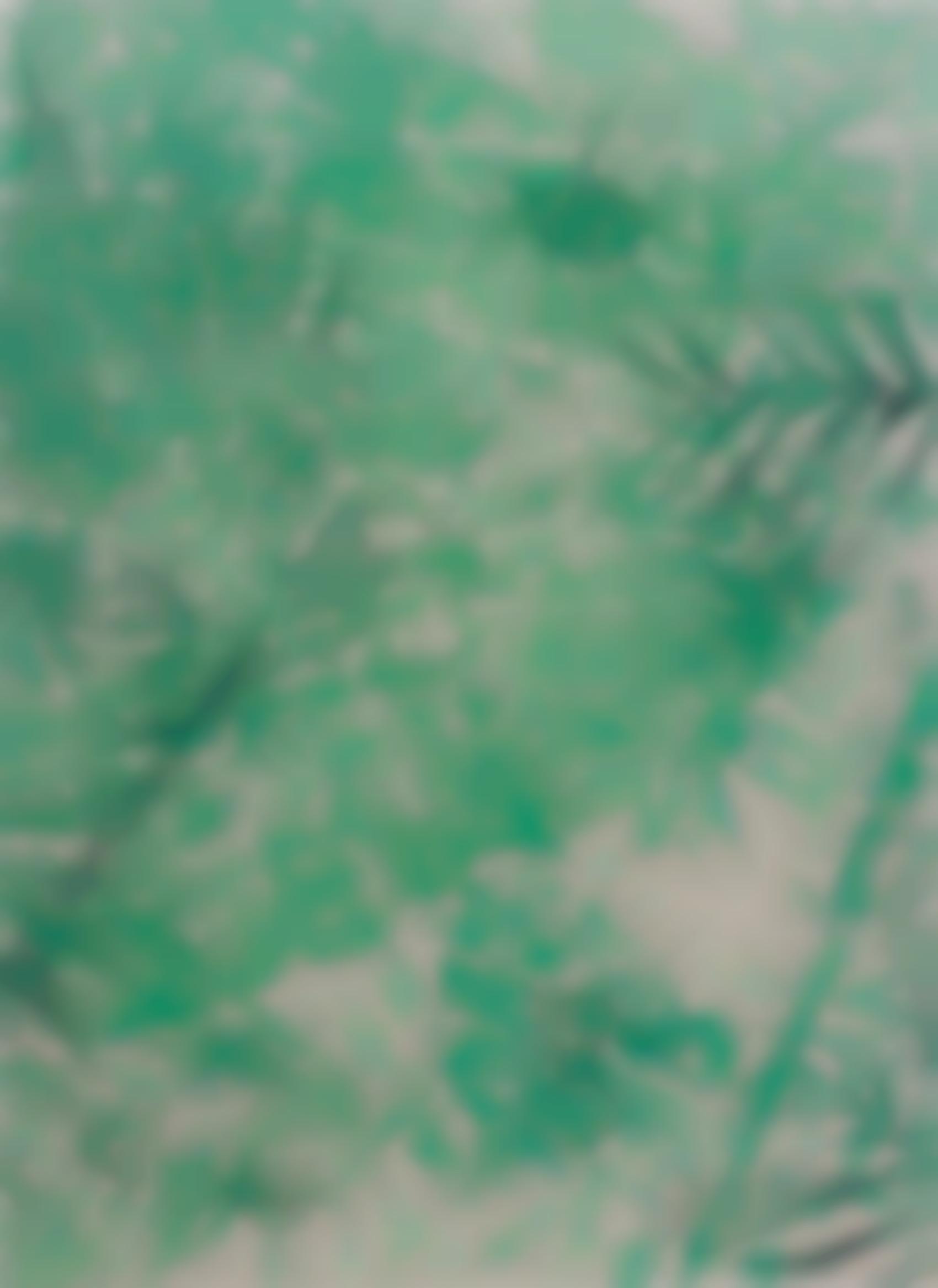 Nico Colon-Untitled (Jungle)-2013