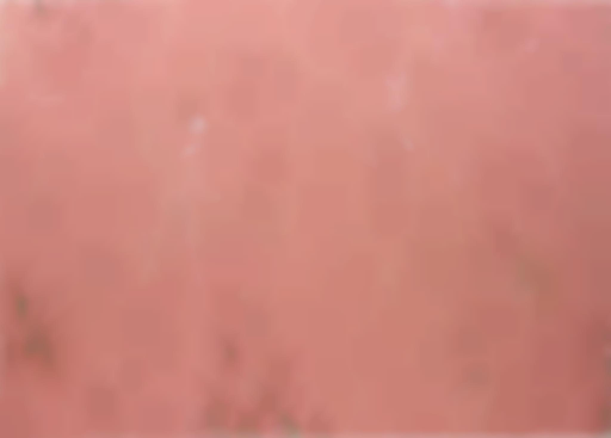 Phoebe Collings-James-Flesh Tint Painting No.4-2013