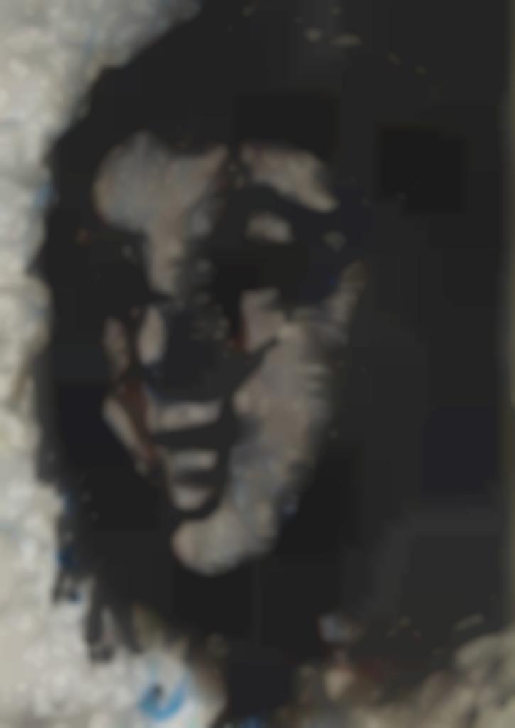 Arnulf Rainer-Gesischter Mit Goya 73-1983
