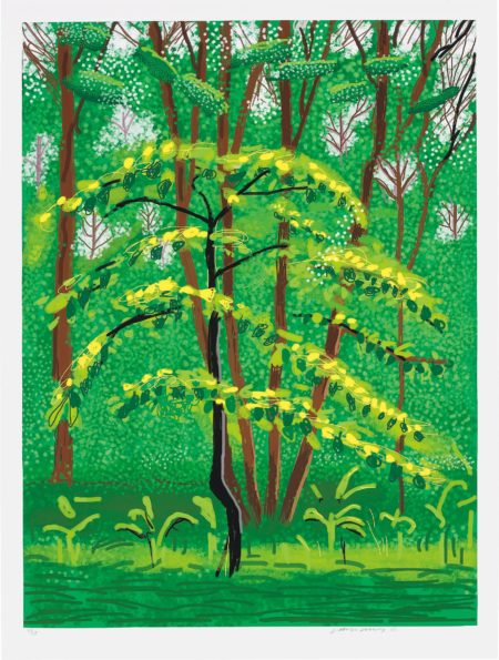 David Hockney-19 May, from The Arrival of Spring in Woldgate, East Yorkshire in 2011 (twenty eleven)-2011
