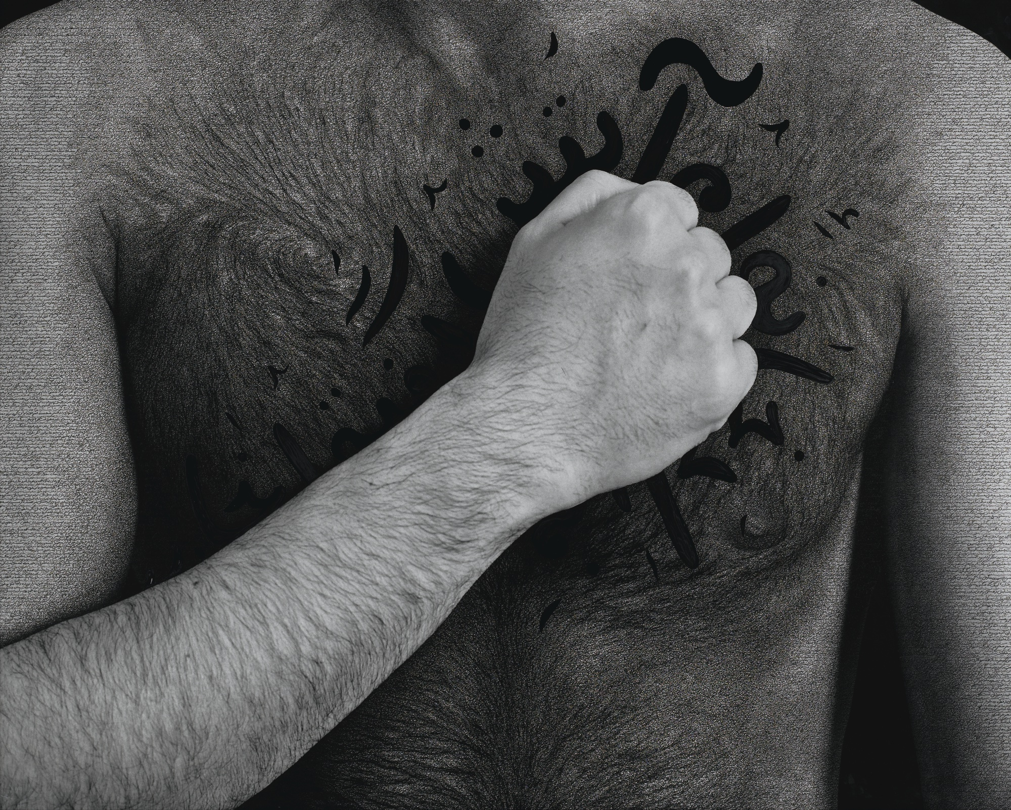 Shirin Neshat-My House Is On Fire-2012