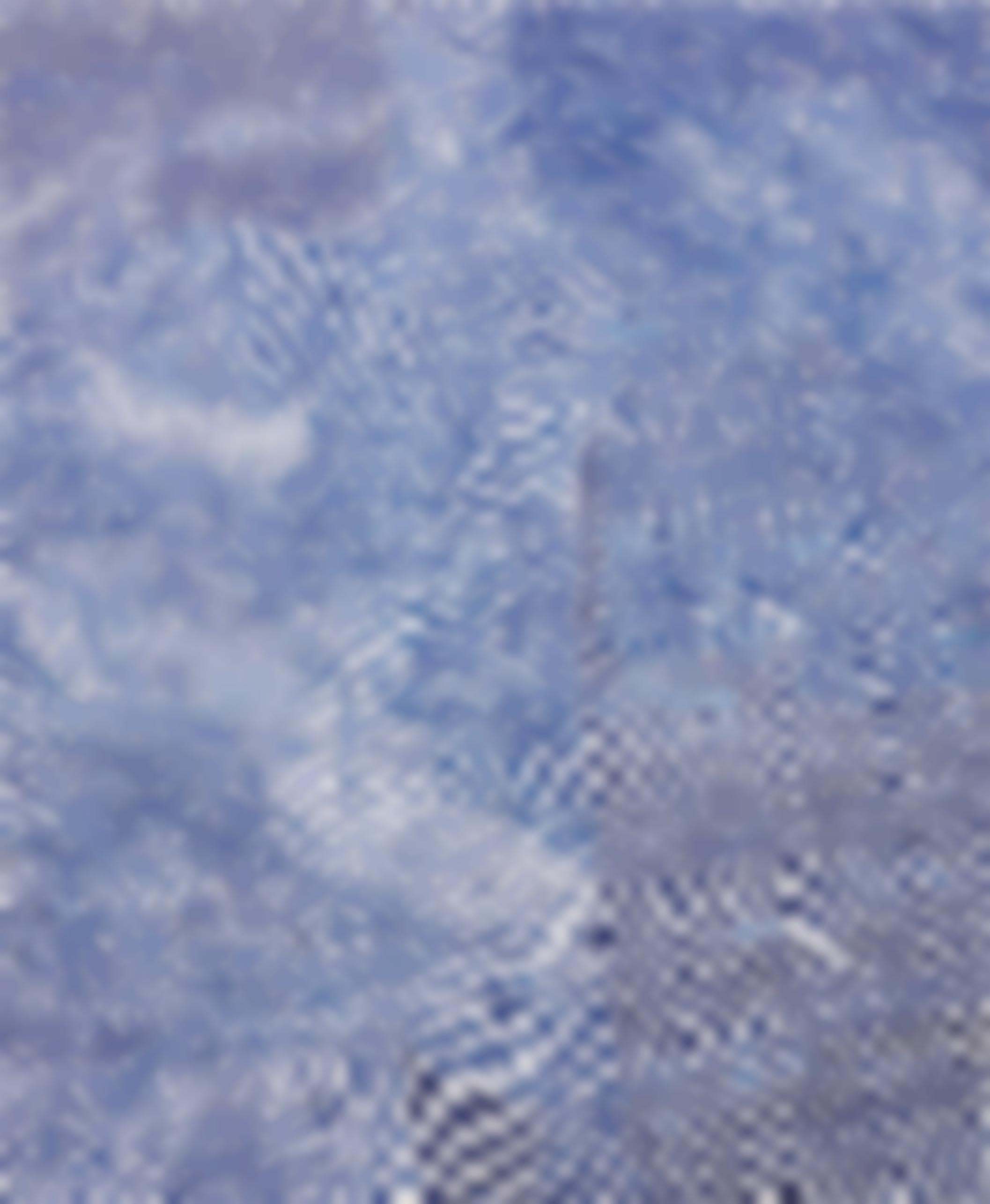 Harmony Korine-Clif Note Check-2014