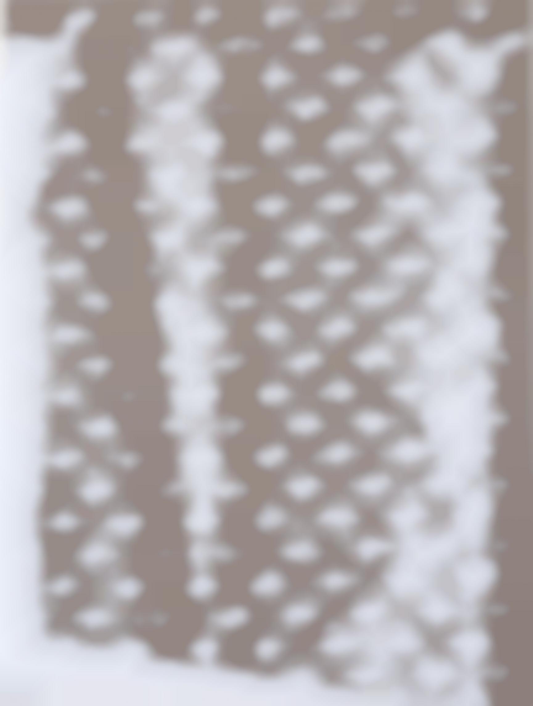 Roman Liska-Dazzle painting (WHITE LV)-2015