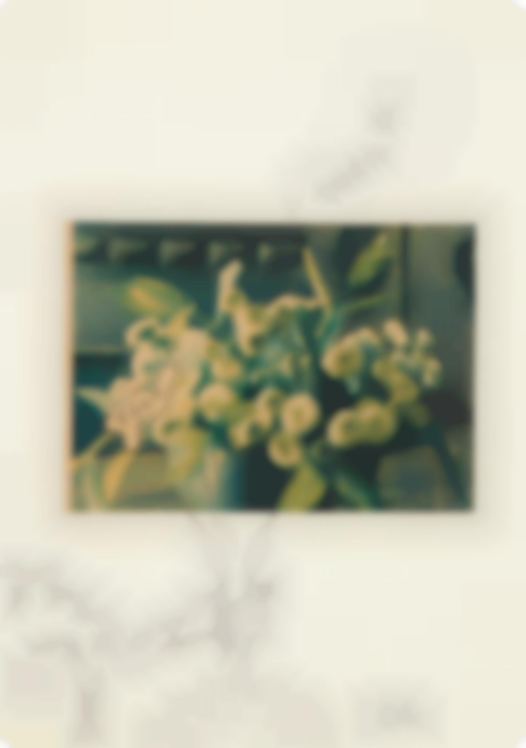 Sigmar Polke-Take Them All-1969