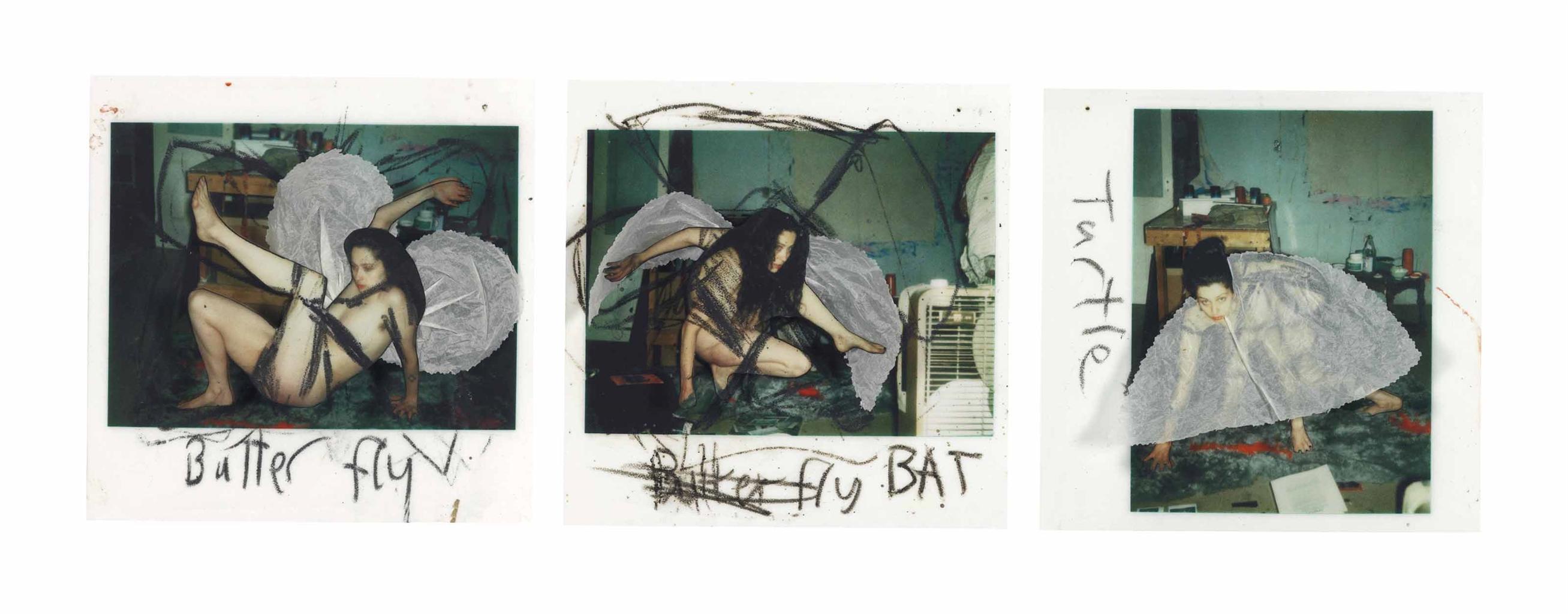 Kiki Smith-Butterfly, Bat, Turtle-2000