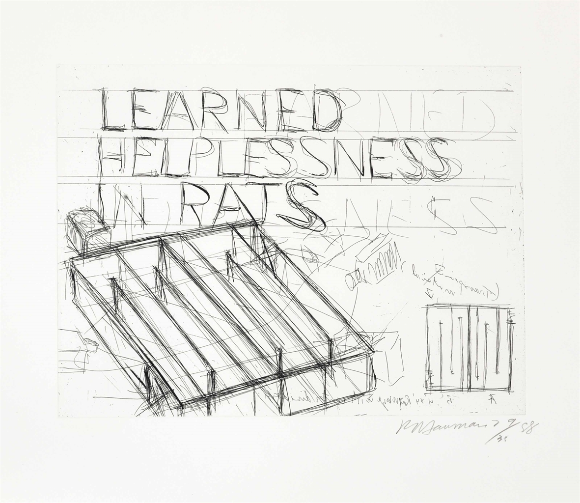 Bruce Nauman-Learned Helplessness in Rats-1988