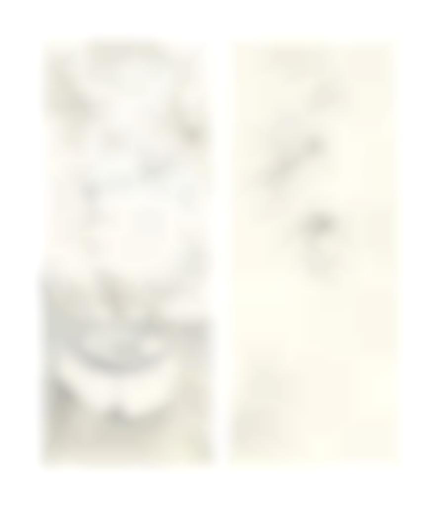 Salvador Dali-Embrassant le pouvoir de ma richesse en comprimant les monstres mous qui me tourmentent obstinement; Fantomes du passé proches des mythes de jeunesse avec un oeuf frit sodomise-1976