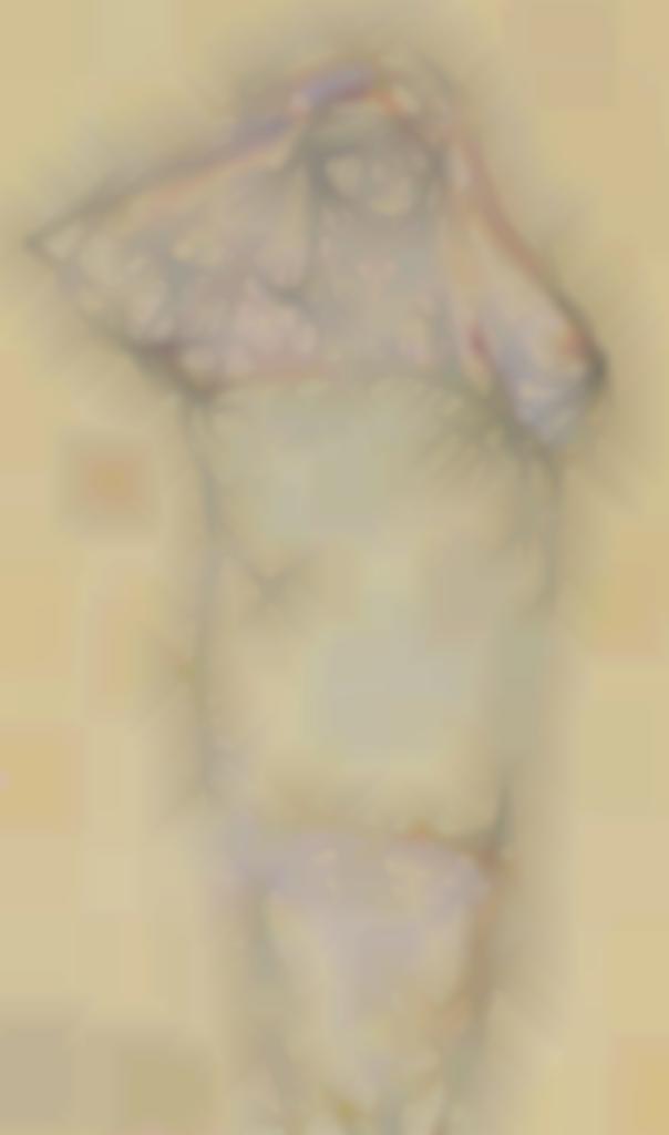 Auguste Rodin-Femme nue debout, passant un vetement-1895