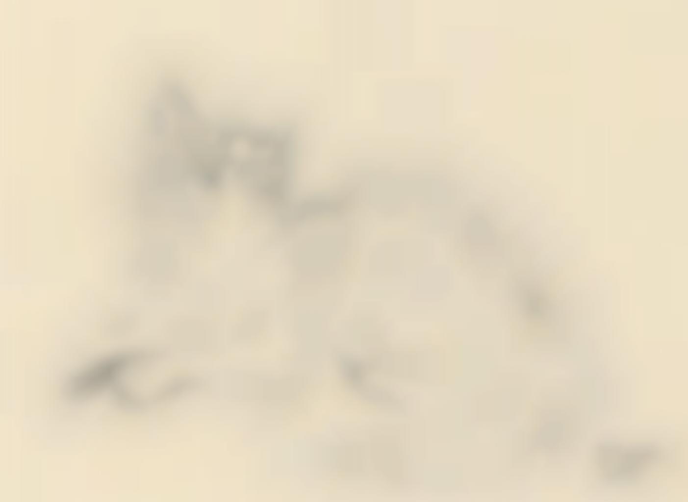 Tsuguharu Foujita-Le chat-1951