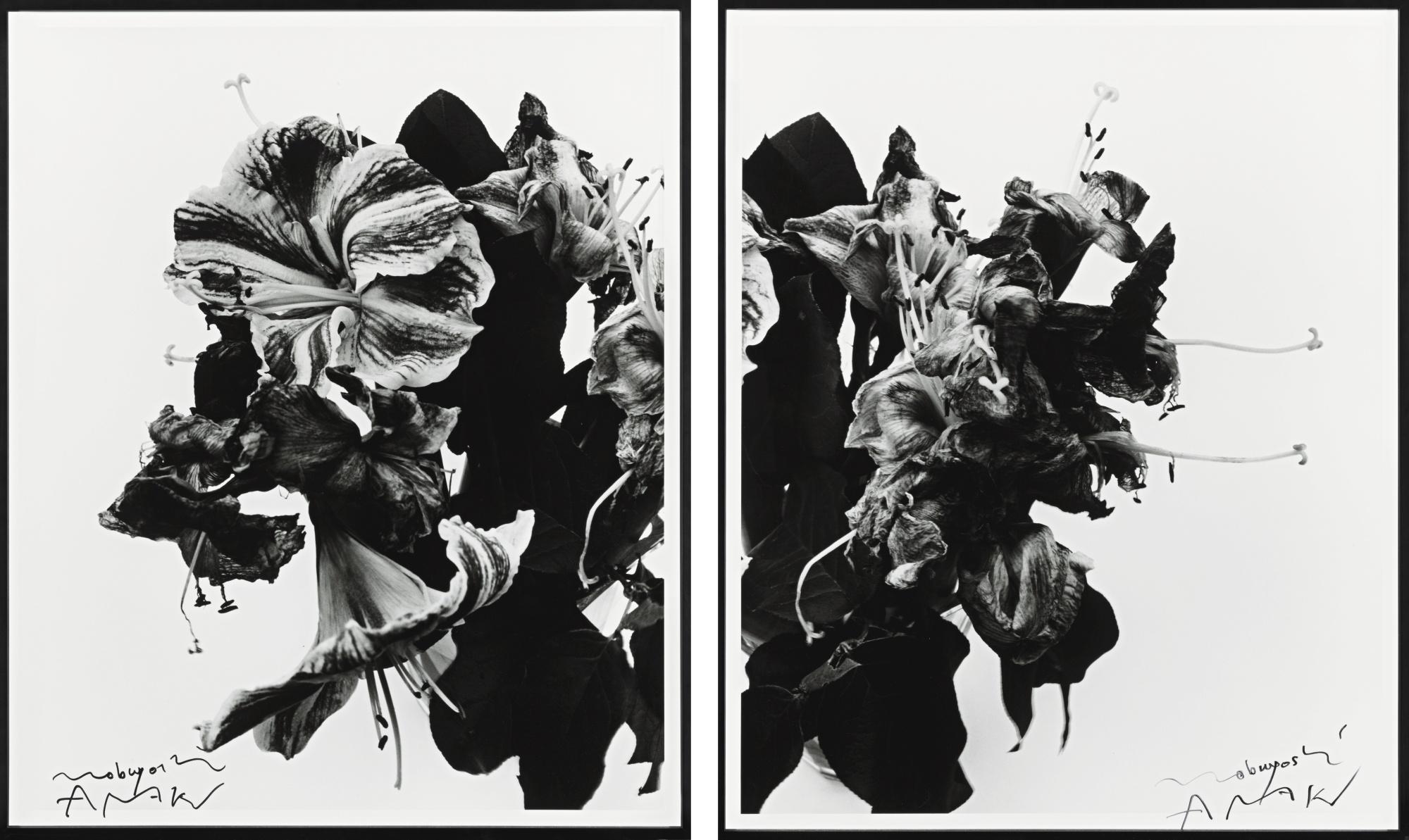 Nobuyoshi Araki-From Close To Range [Diptych]-1991