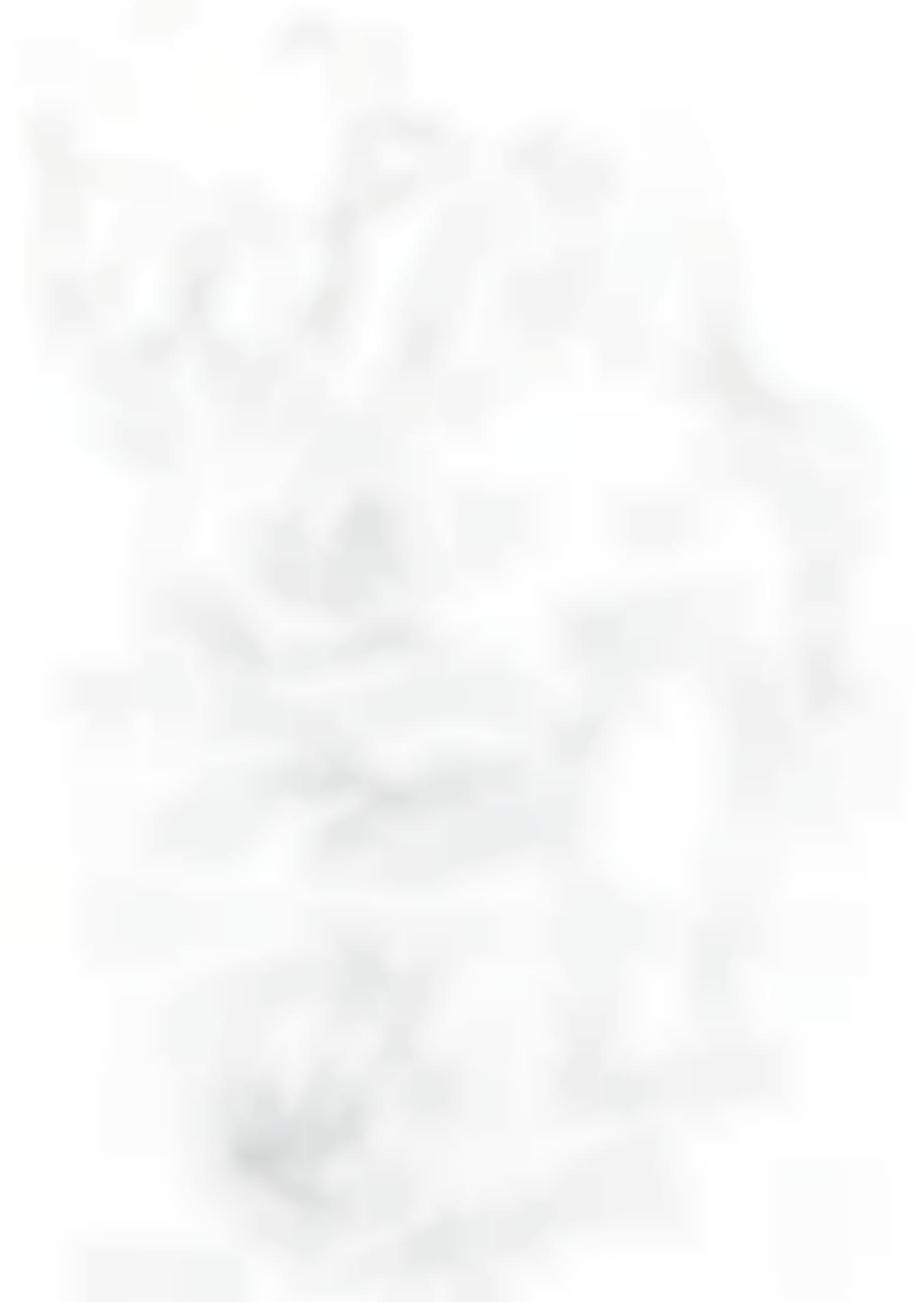 Georg Baselitz-Untitled-1989