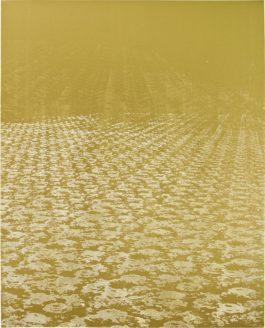 Rudolf Stingel-Untitled (Plan B)-2008