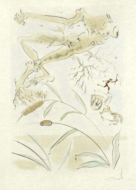 Salvador Dali-La Chene et le Roseau, from 'Le Bestiaire de La Fontaine Dalinise'-1974