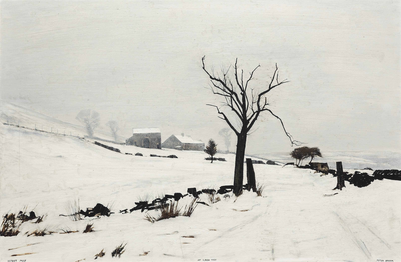 Peter Brook-Slight Mist at 1,000 feet-