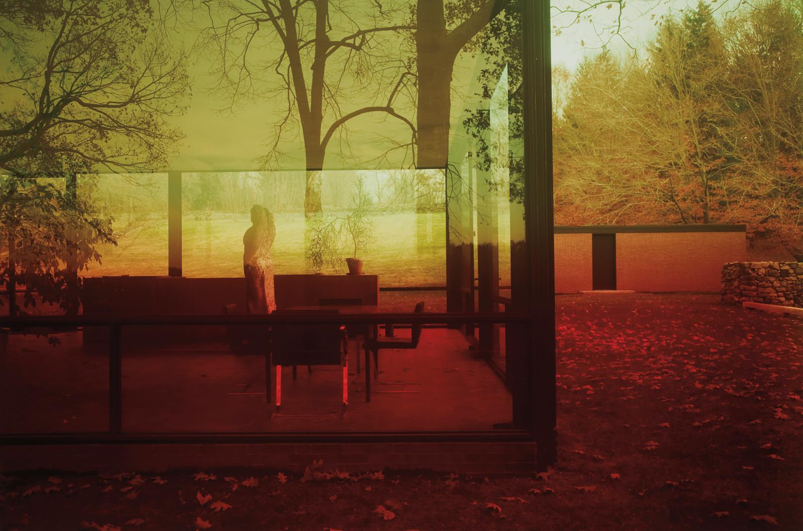 James Welling-Untitled #0696 (Glass House)-2006