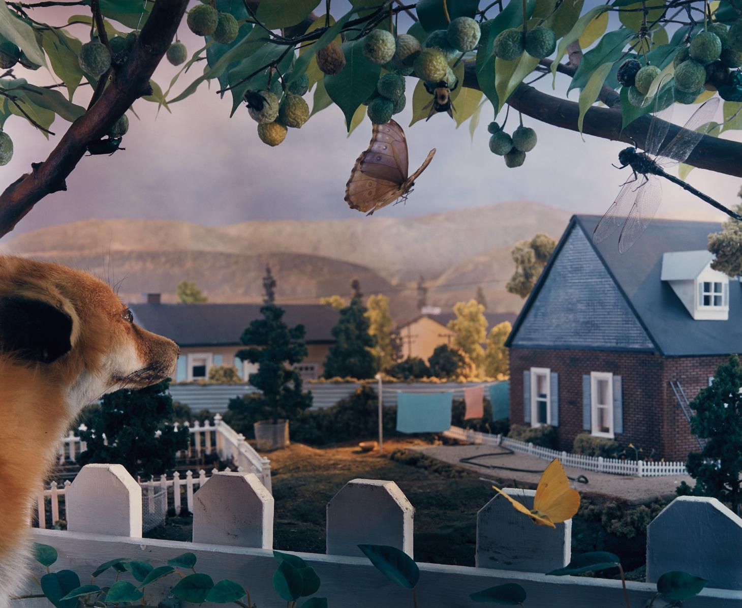 Gregory Crewdson-Natural Wonder-1991