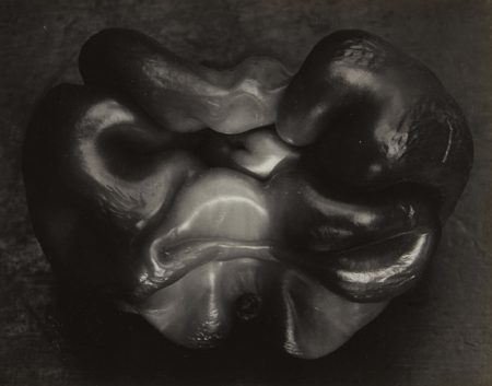 Edward Weston-Pepper-1930