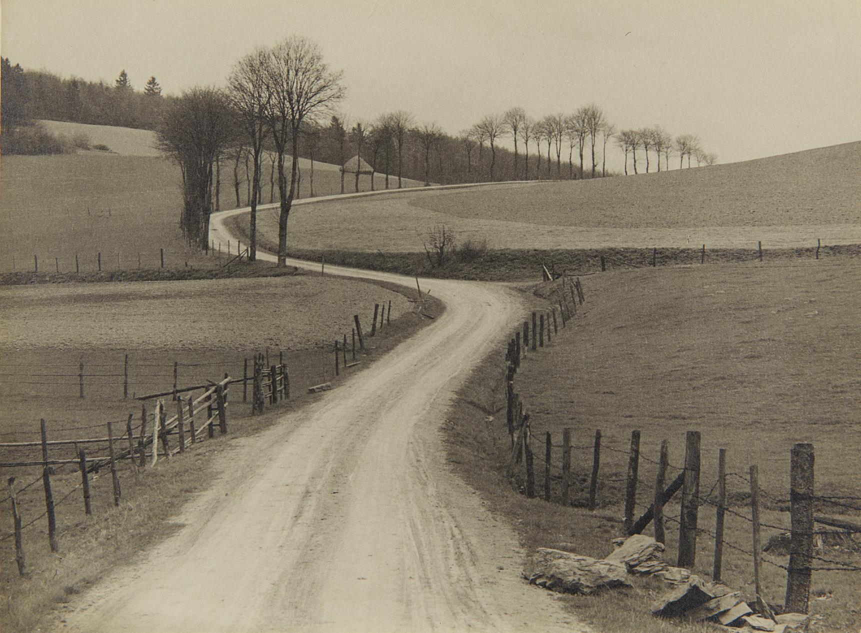 Albert Renger-Patzsch-Untitled (country road)-1930