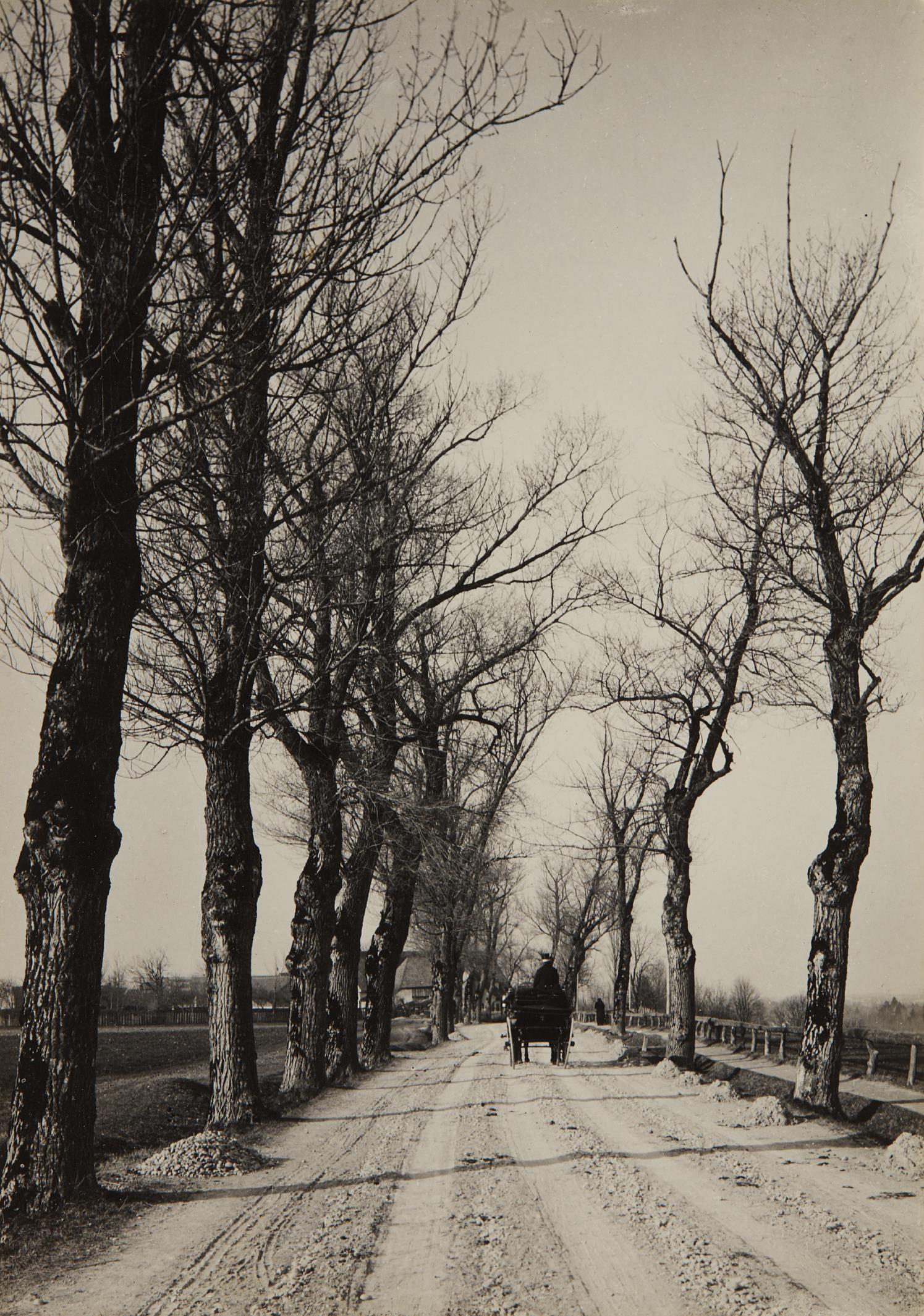 Alfred Stieglitz-November Days-1887