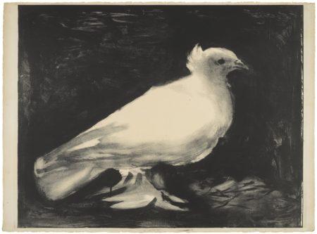 Pablo Picasso-La Colombe (B. 583; M., Pp. 141)-1949