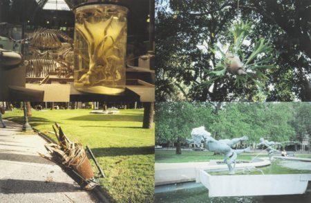 Gabriel Orozco-Especimenes En Montevideo (Specimens In Montevideo)-1997