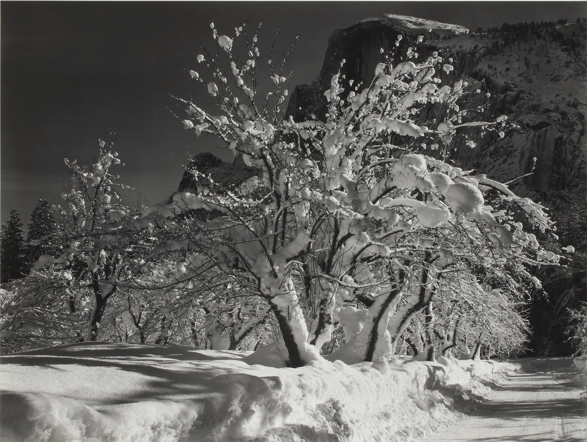 Ansel Adams-Half Dome, Orchard, Winter, Yosemite National Park, Cal.-1932