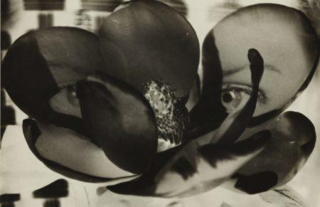 Man Ray-Magnolia (Double Exposure)-1930