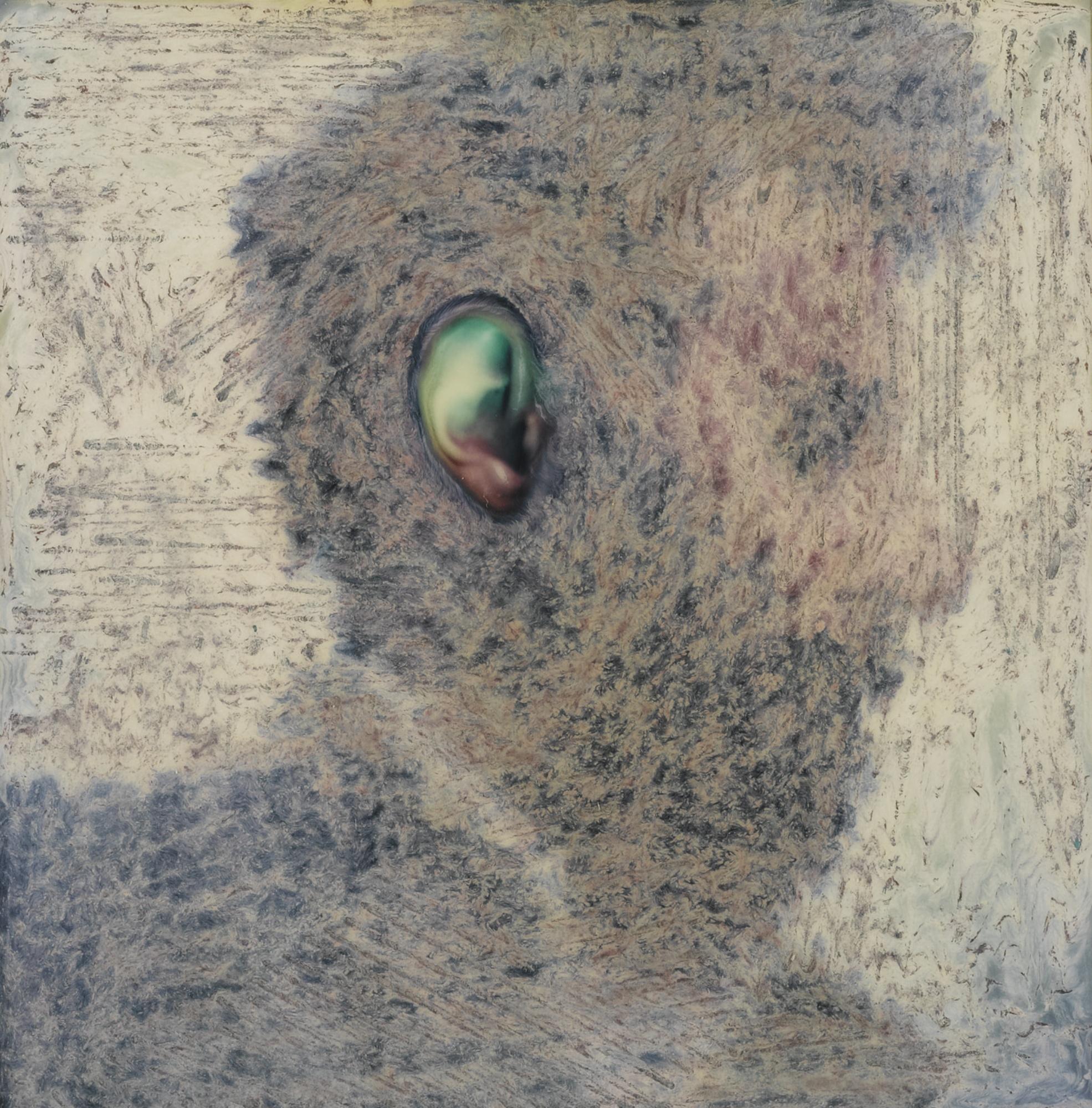 Lucas Samaras-Photo-Transformation 10/31/73 (Ear)-1973