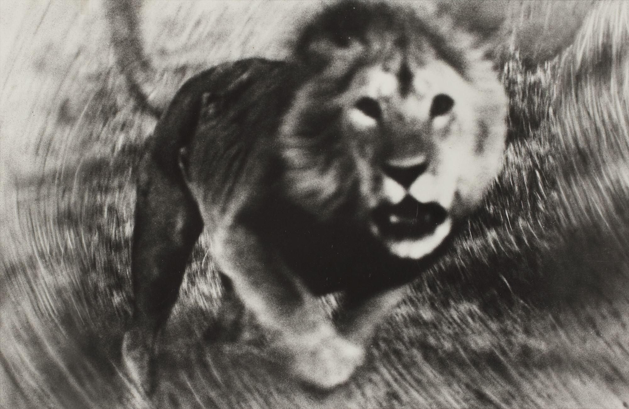 Peter Beard-Loliondo-1964