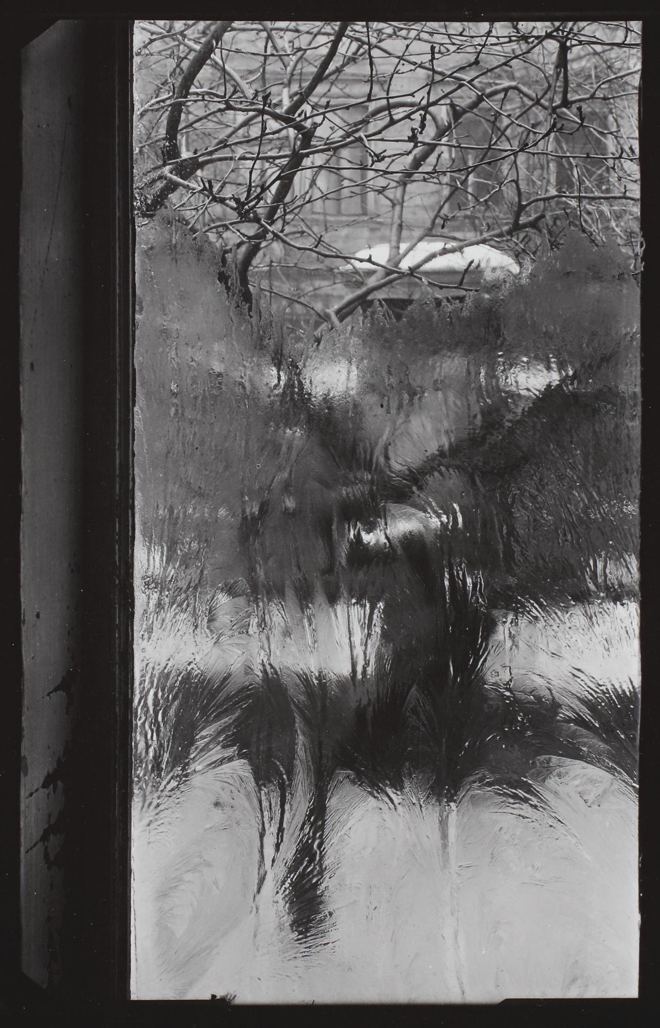 Josef Sudek-Frosts Signature (The Window Of My Studio)-1950
