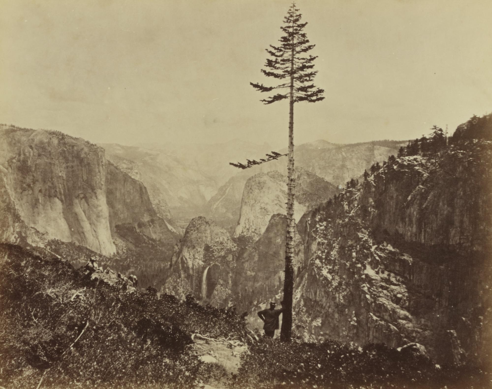 Charles Leander Weed-Selected Images-1880
