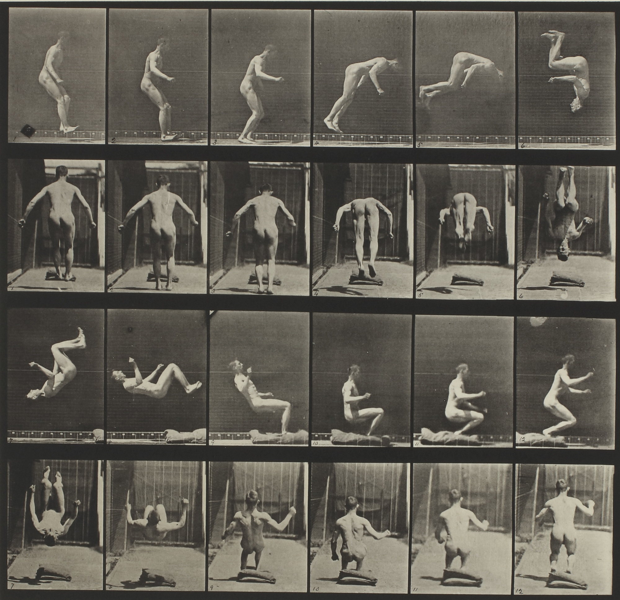 Eadweard Muybridge-Selected Motion Studies-1877