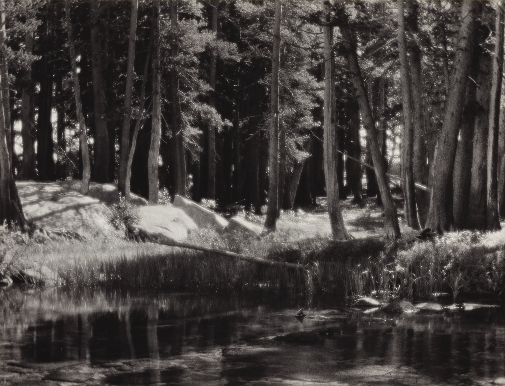 Ansel Adams-Forest And Stream, Lyell Fork Of The Merced River, Yosemite National Park, California; Sierra Nevada: The John Muir Trail (Berkeley: The Archetype Press, 1938)-1921