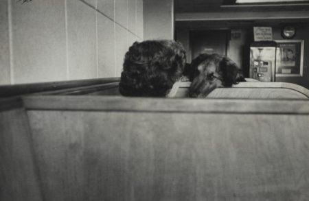 Elliott Erwitt-New York-1953