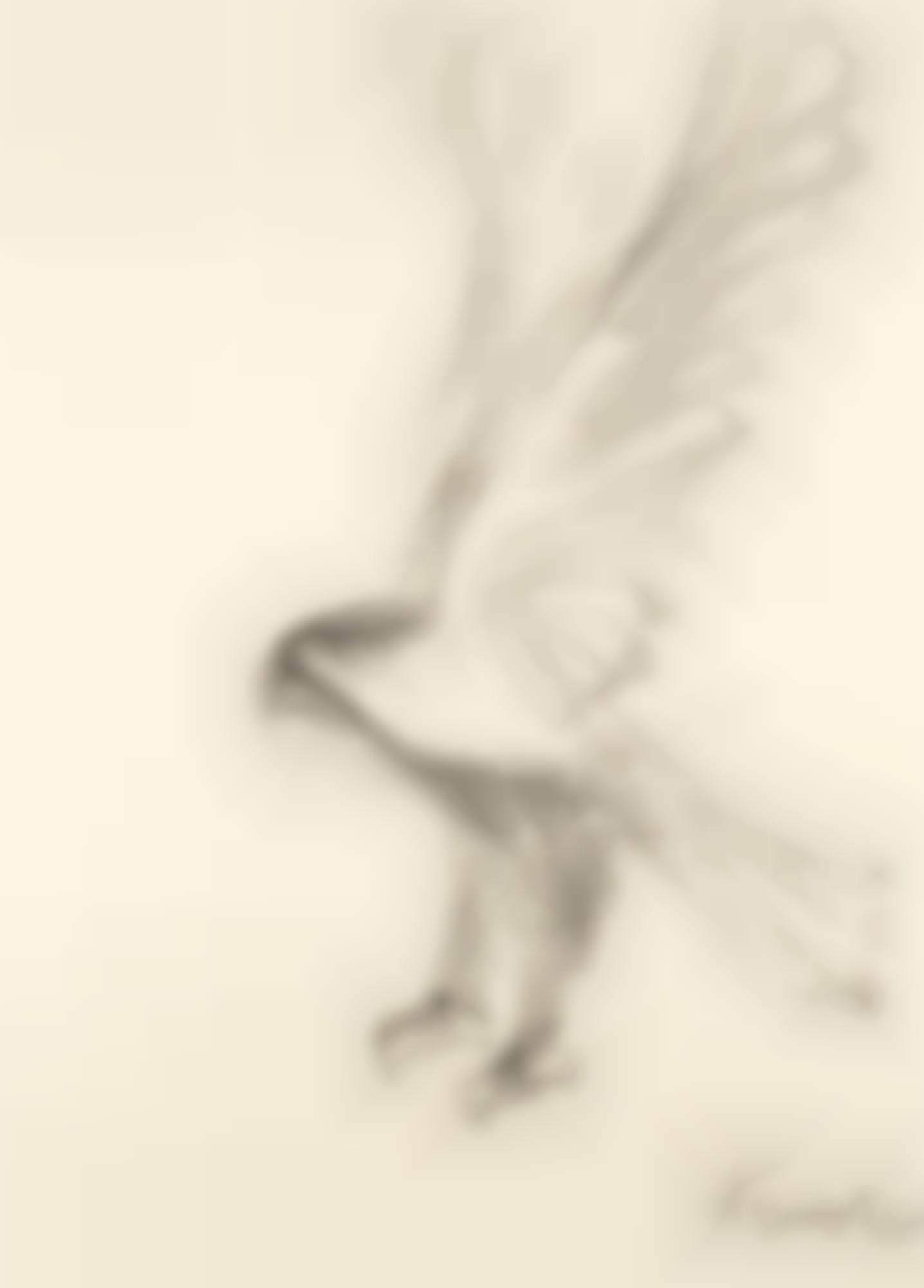 Elisabeth Frink-Eagle-1966