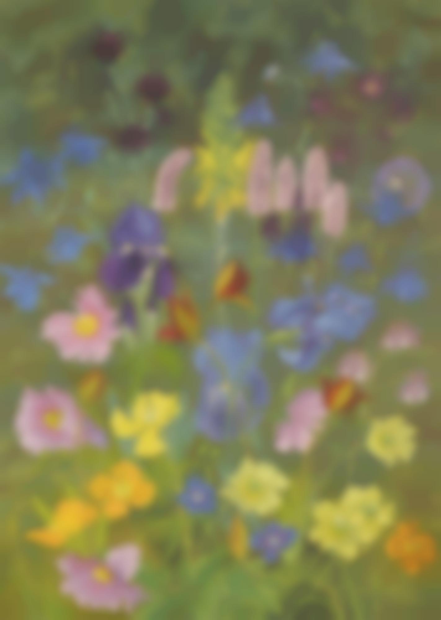 Cedric Morris-Irises, Anemones, Carnations, Aquilegia And Wild Orchids-1966