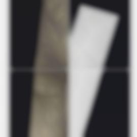 Alison Rossiter-Eastman Kodak Elite, Exact Expiration Date Unknown, Ca. 1980S, Processed 2016 (#1)-2016