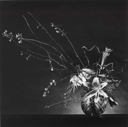 Robert Mapplethorpe-Flower Arrangement-1982