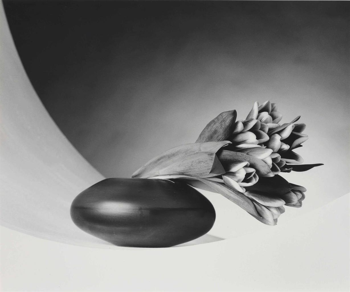 Robert Mapplethorpe-Tulips-1987