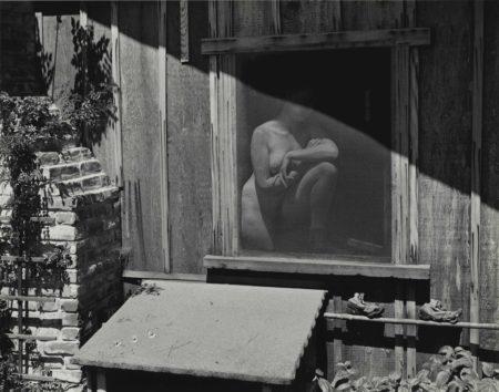 Edward Weston-Springtime-1943