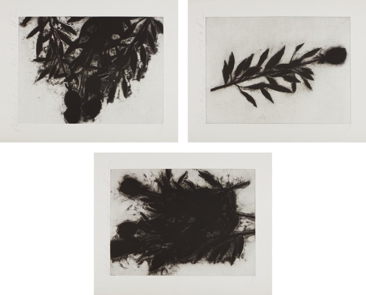 Donald Sultan-Black Roses (October); Black Roses; (November); And Black Roses (December)-1989