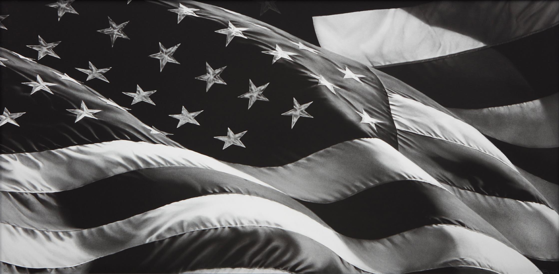 Robert Longo-Untitled (Flag)-2013